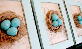 ביצים ביצים ביצים