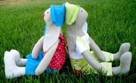ארנבי וארנבי, תאומים לא זהים